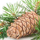 Сырые семена и орехи, <br />без обжарки для усиления<br />  вкуса и запаха